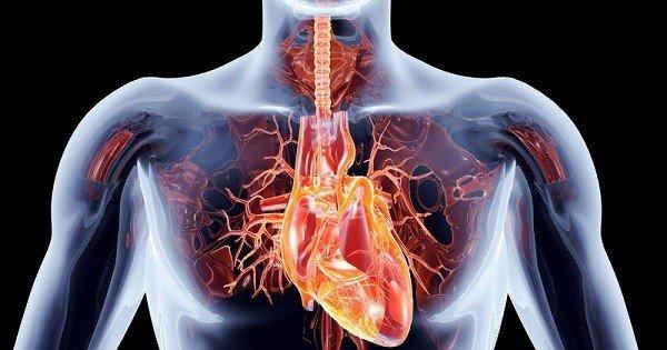 بررسی تاکیکاردی قلب + علائم و نشانه ها