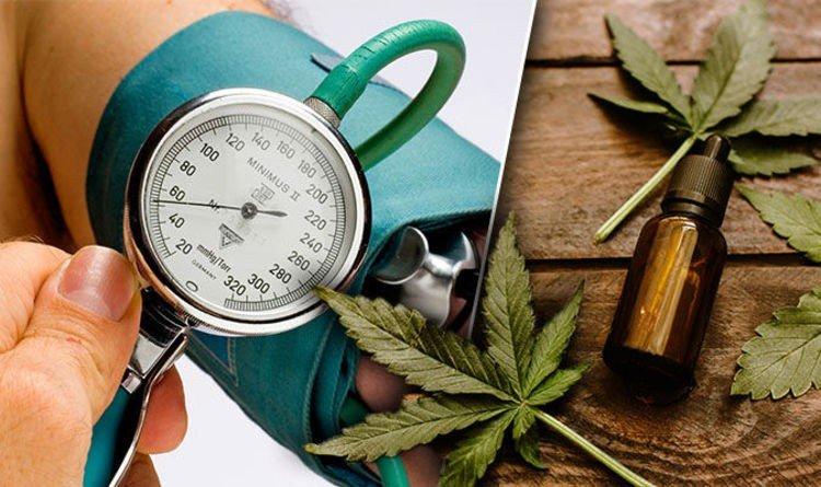 کاهش فشار خون بالا با روغن شاهدانه