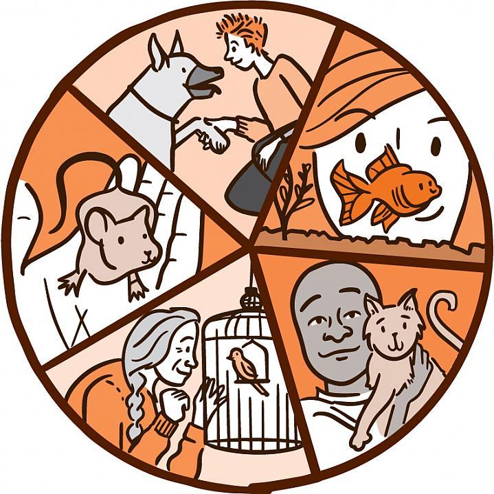 حیوانات خانگی و کنترل فشار خون بالا